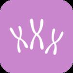 Karyotype of Miscarriage Tissue